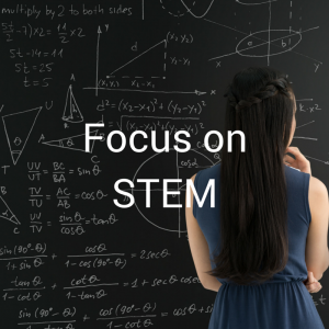 focus on stem(1)