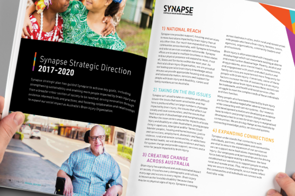 Synapse Annual Report Inside spread graphic design